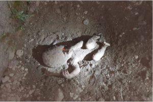 गाडिएको अवस्थामा शिशु फेला, १५ वर्षीय बालिका पक्राउ