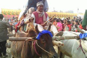 थारु समुदायमा सिरुवा मेला तथा जुडशितल पर्वको महत्व
