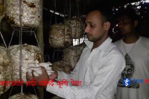 लकडाउनले गर्दा थलिदै कृषि पेशा (भिडियो रिपोर्ट सहित)
